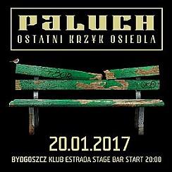 Bilety na koncert Paluch Bydgoszcz - 20-01-2017